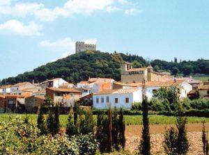 Llicència d'activitat La Roca del Vallès